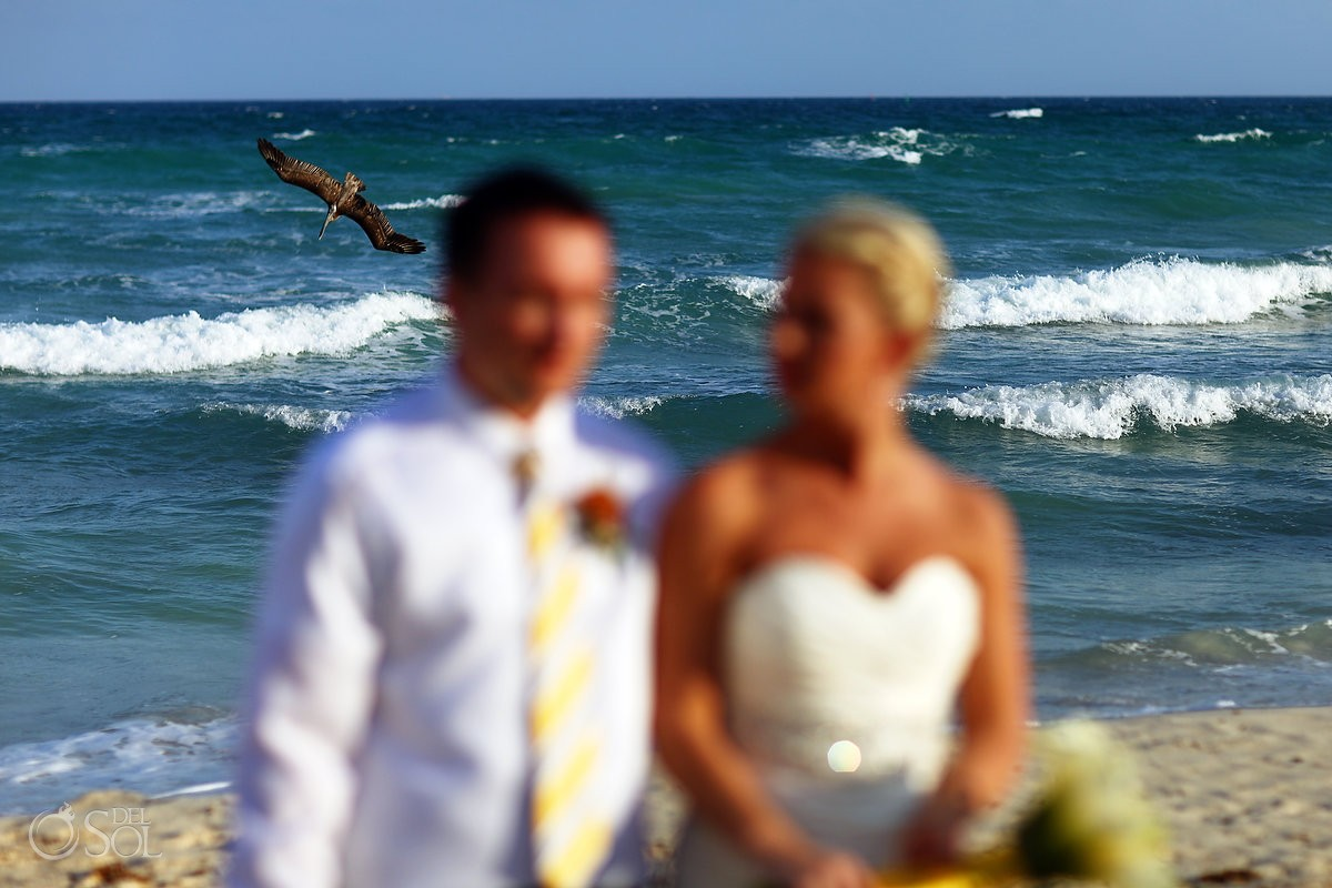 Bird flies over the ocean as a backdrop for bride and groom