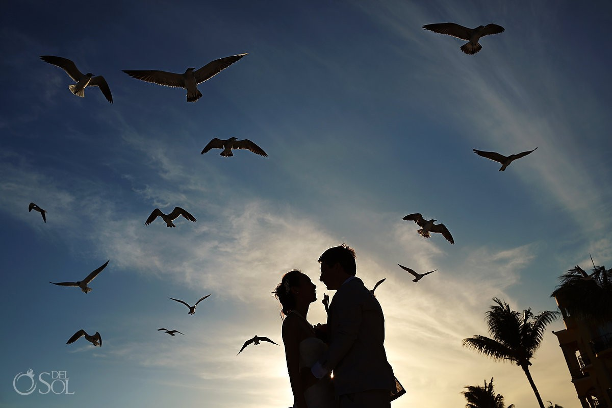 Birds and sky beach wedding bride and groom silhouette