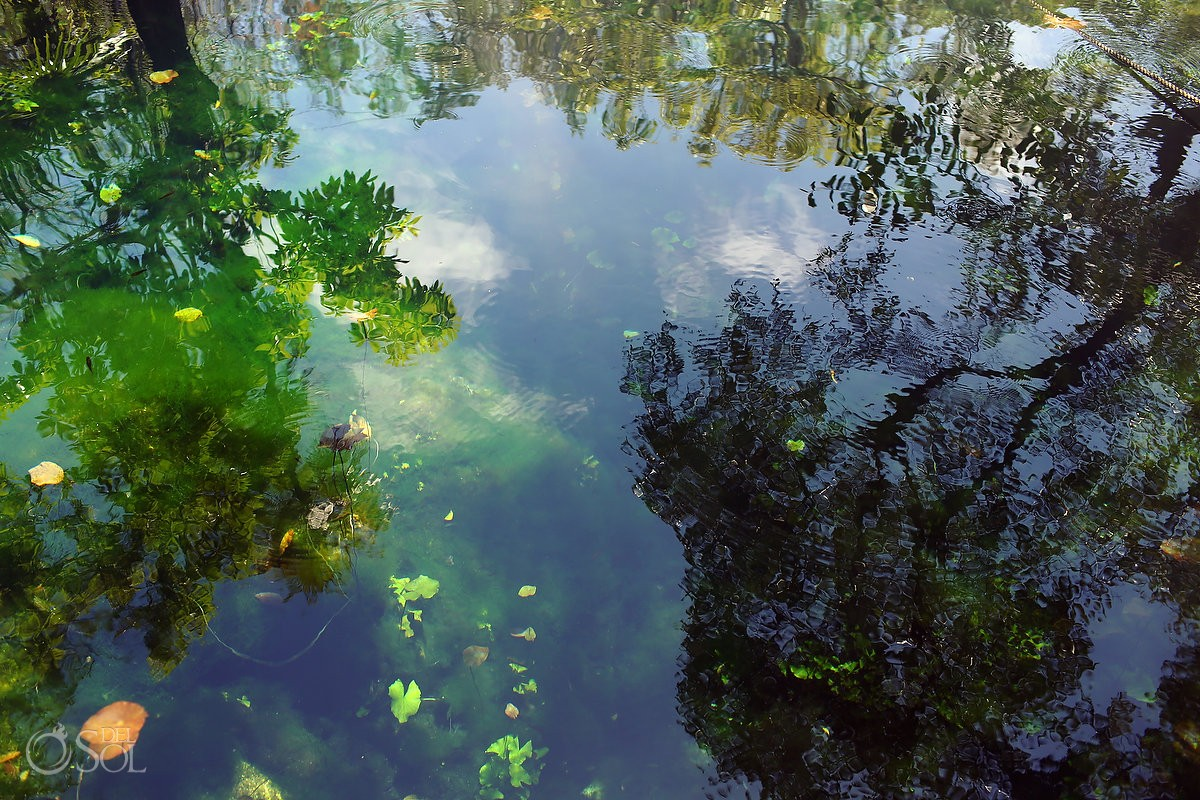 Cenote trash the dress photography Riviera Maya
