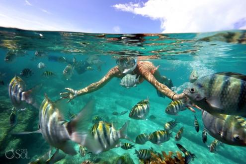 Yes to Mexico vacation Trish Suhr Isla Mujeres #Aworldofitsown Tourist Fish