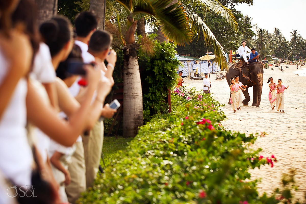 elephants in a wedding Koh Samui, Miskawaan Resort thailand destination weddings