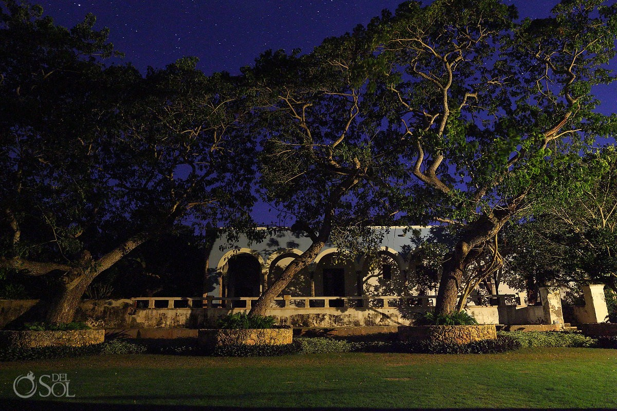 Old trees guard the Hacienda Like grandfathers of this land at Chable Resort, Merida Yucatan