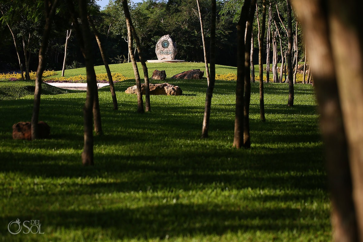 Beautiful gardens guarded by Ceiba trees at the Entrace of Chable Resort Merida Yucatan