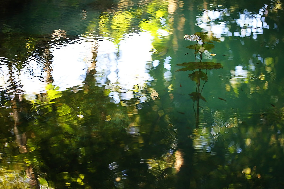 Sacred Cenote Waters will heal your soul at Chable Resort , Merida Yucatan