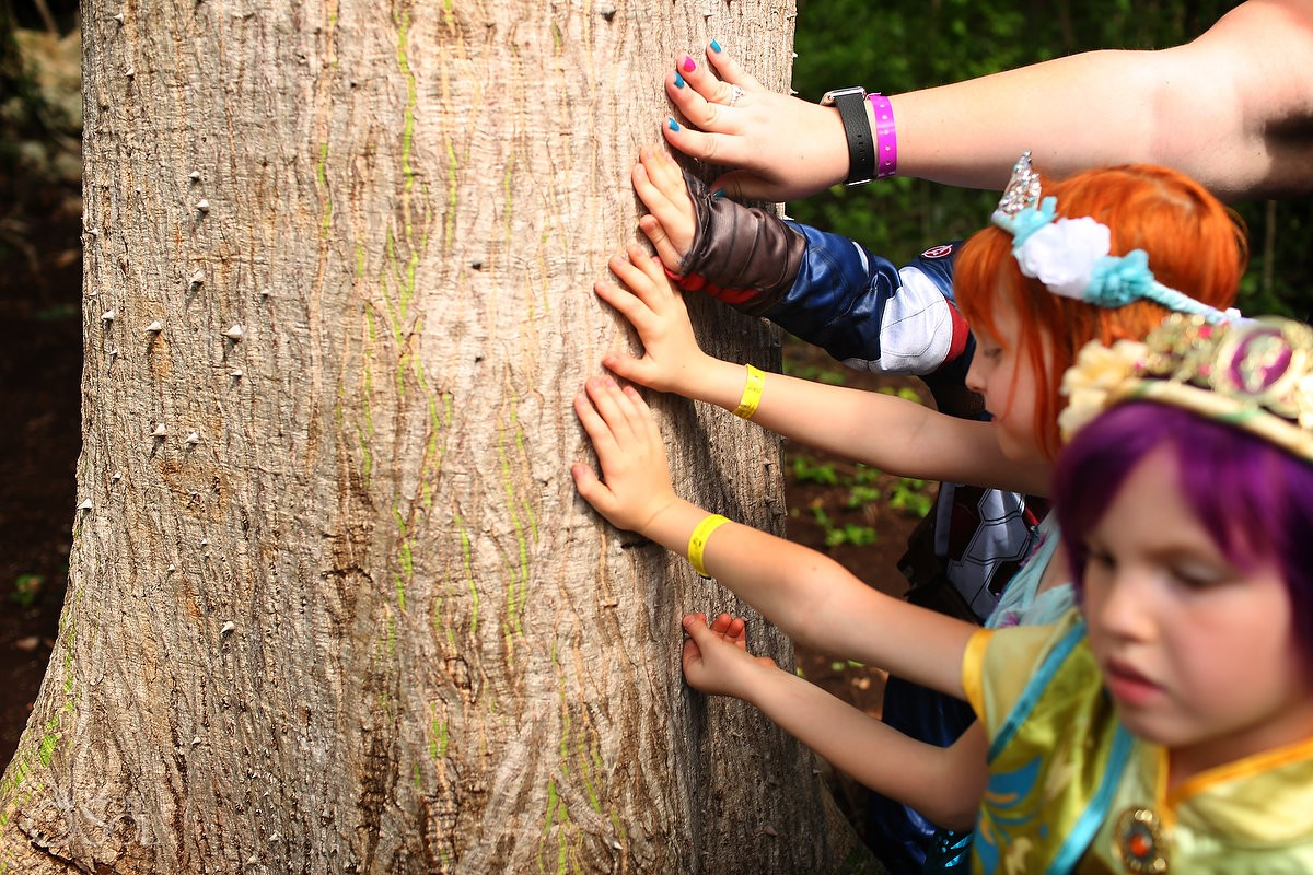 Kutrina and children touch the ceiba tree in special burial ritual