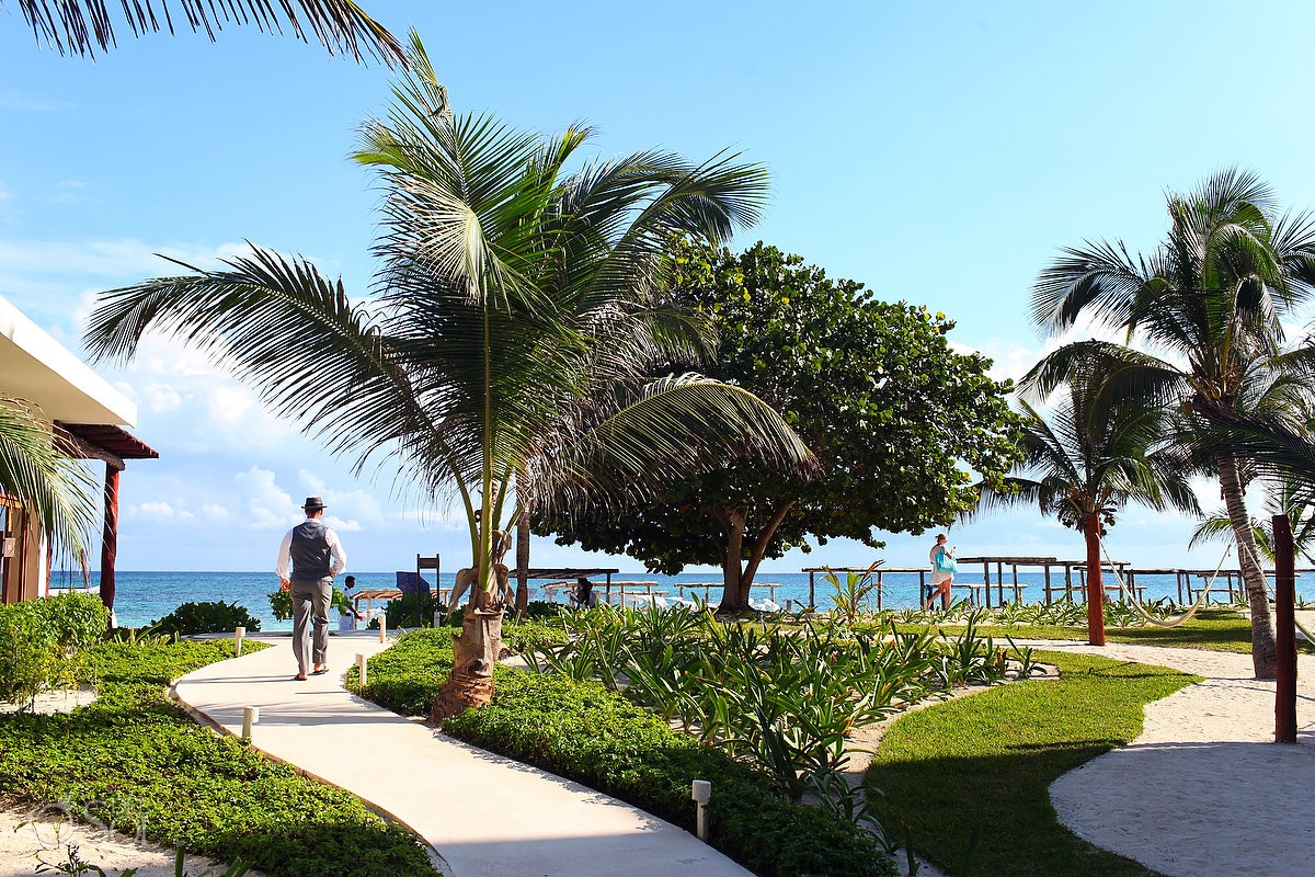 akumal bay wellness beach resort with groom's wedding