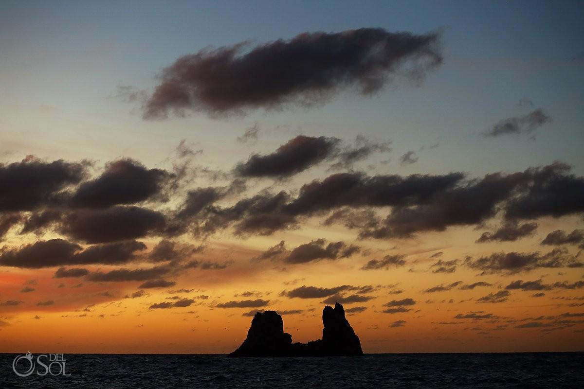 sunset Diving live-aboard Socorro Revillagigedo Islands