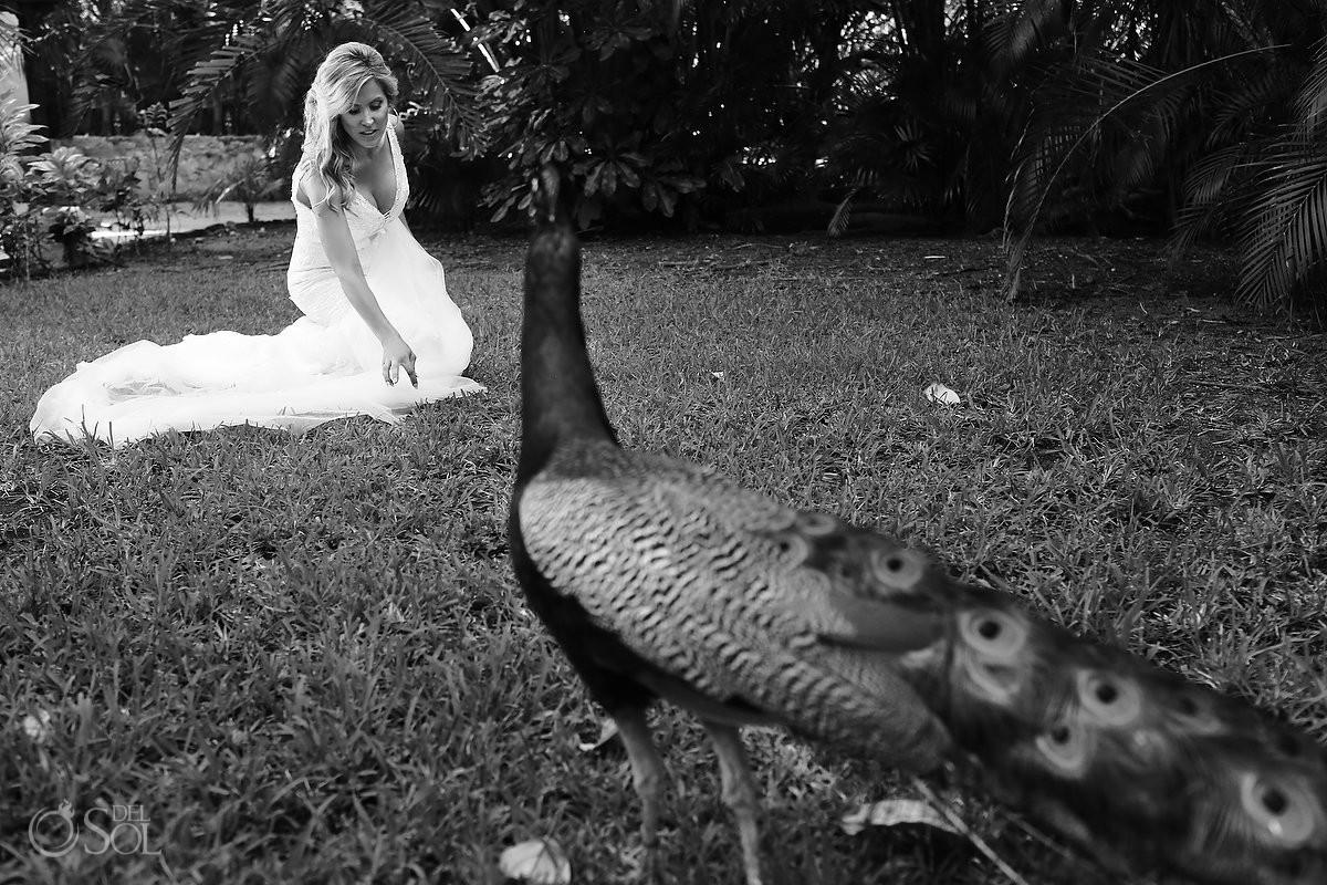 bride with a peacock at Hotel Esencia in Mexico