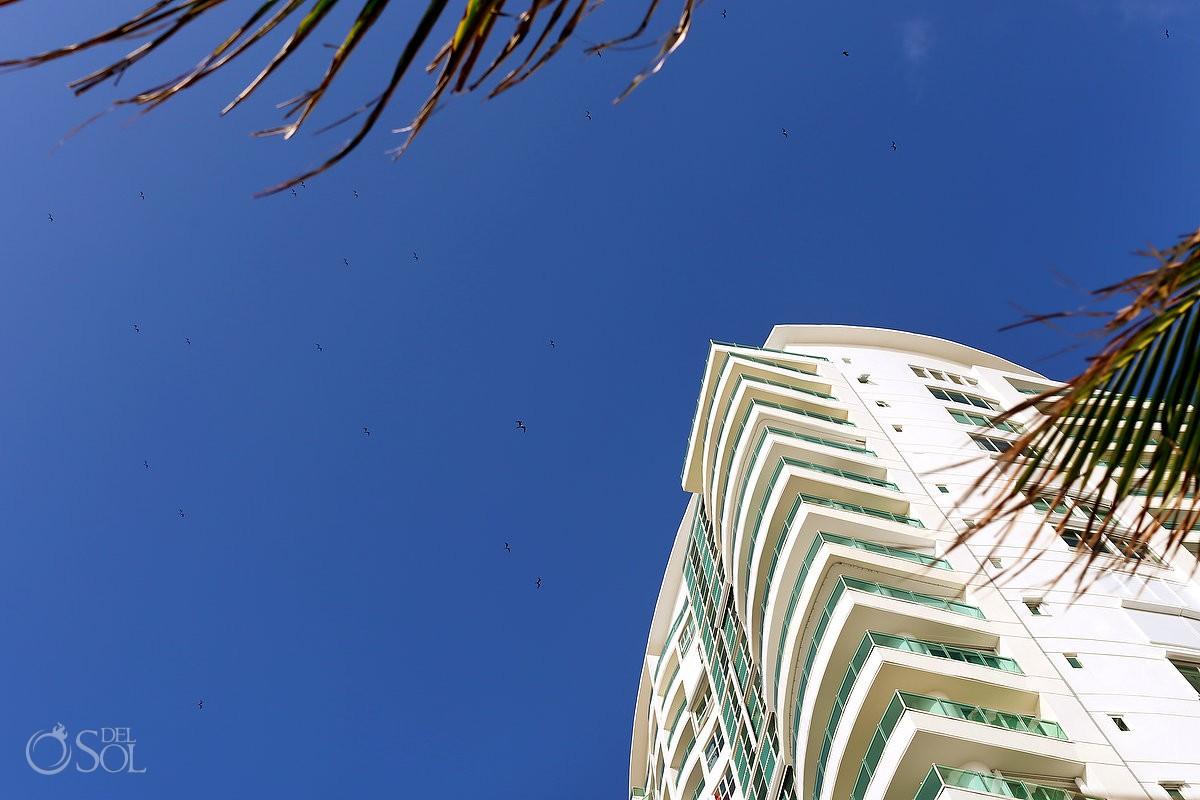 birds flying over a Wedding at Porto Fino Condominios, Cancun, Mexico