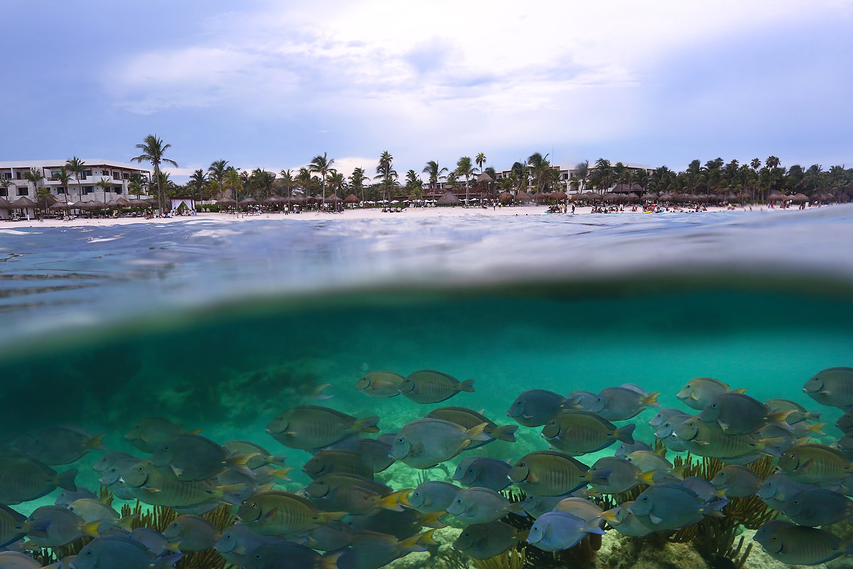 Akumal Beach Resort All Inclusive Akumal Mexico