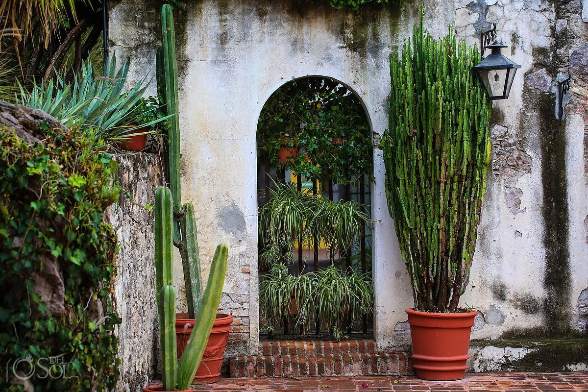 cactus garden Belmond Casa de Sierra Nevada, San Miguel de Allende