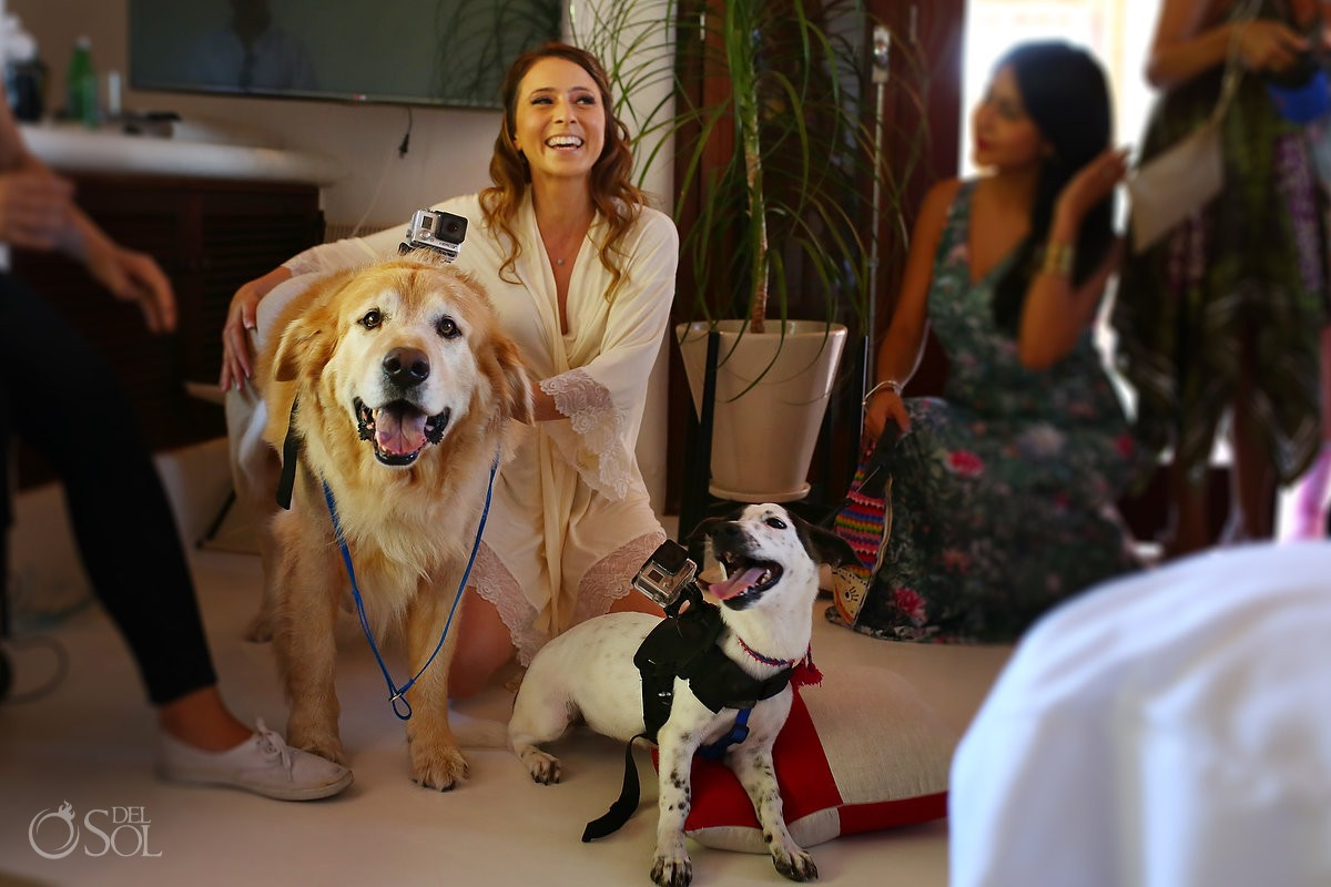 Wedding video-dog-ruff-ers with bride at hotel esencia mexico