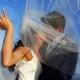Paradisus La Perla weddings