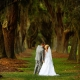 bride and groom kiss at avenue of the oaks st simons island wedding