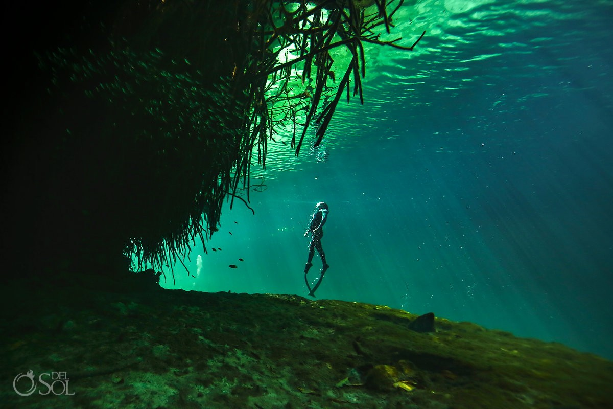 free-diving cenotes riviera maya mexico