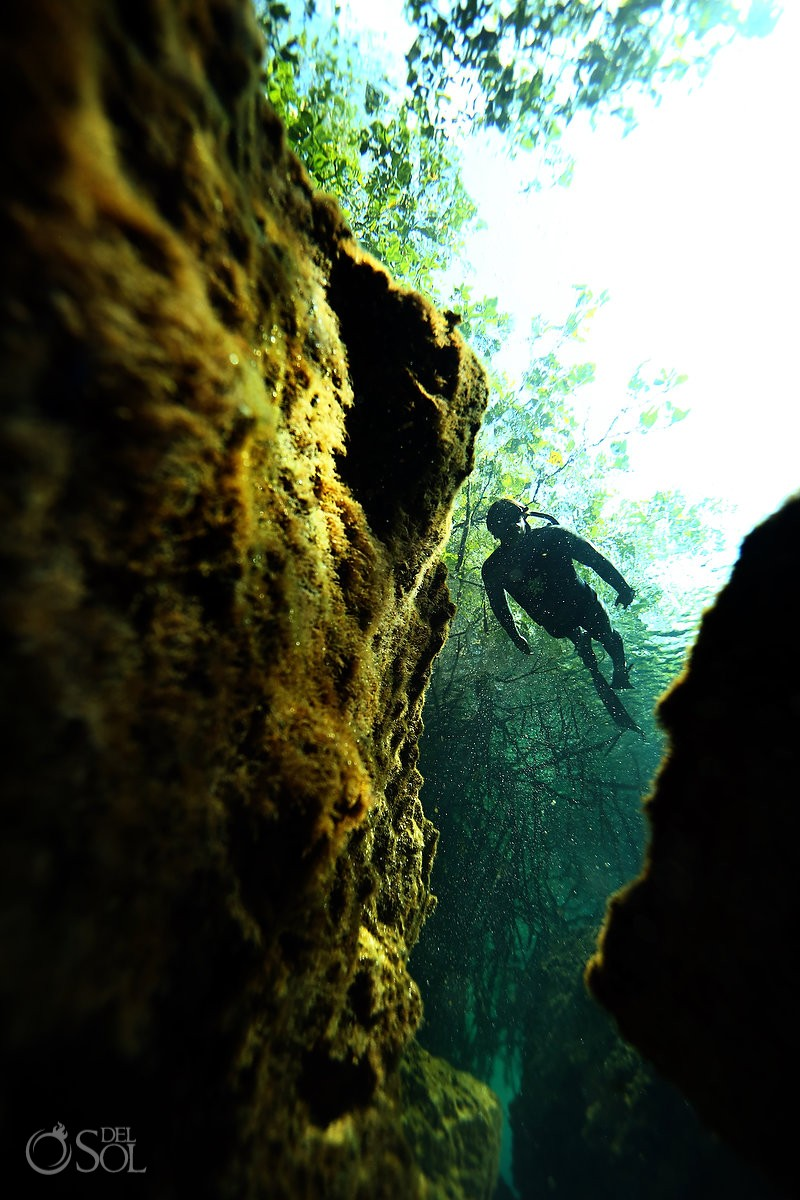 casa cenote free-diver riviera maya mexico