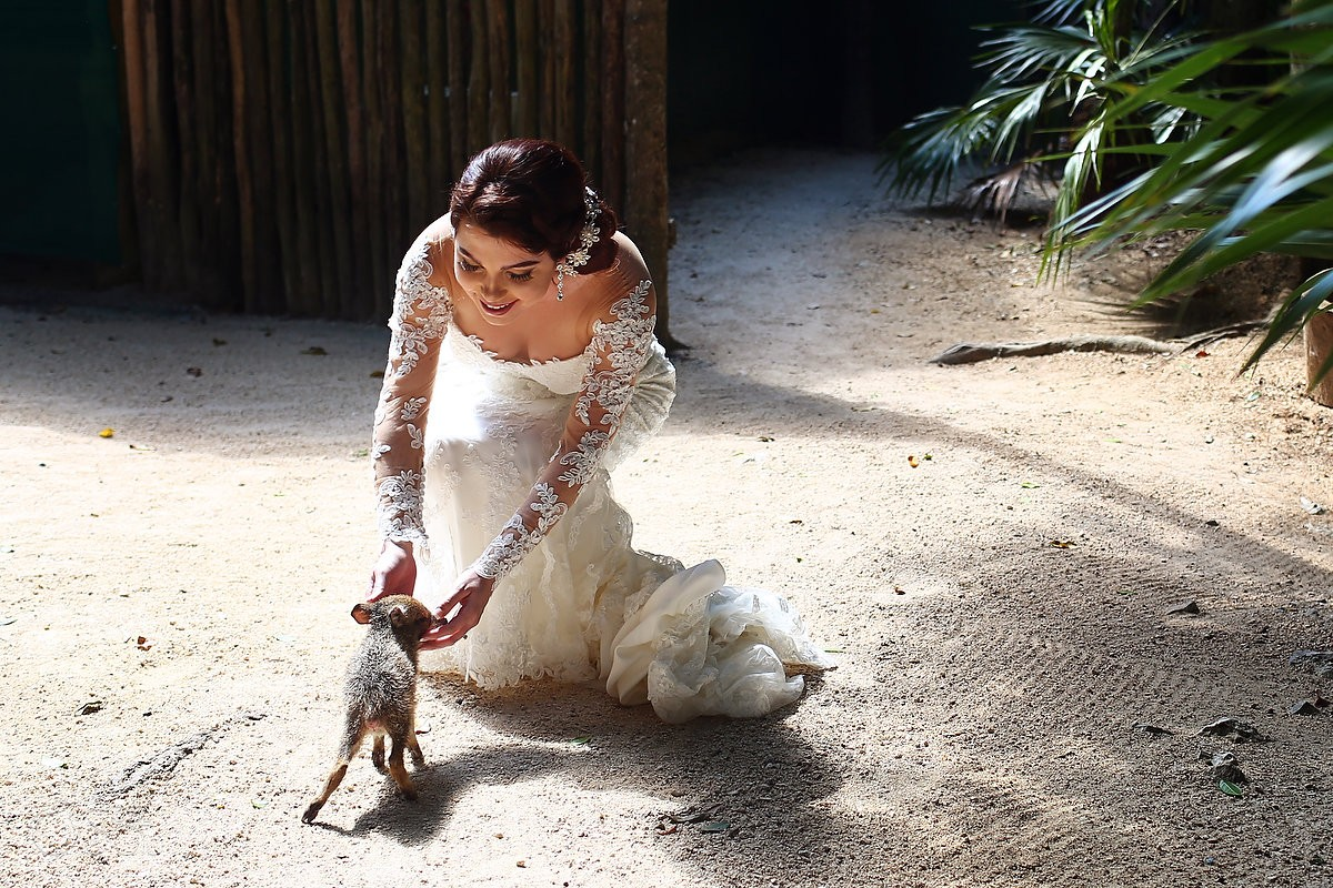 bride strokes wild pig peccary Aktun-Chen animal wildlife park Cenote and Beach Trash the Dress Riviera Maya Mexico