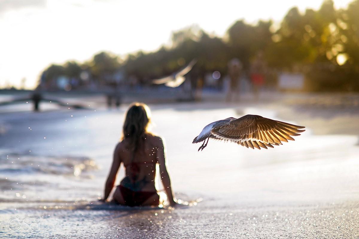 Amazing light sunset beach birds Boudoir Photography Viceroy Riviera Maya