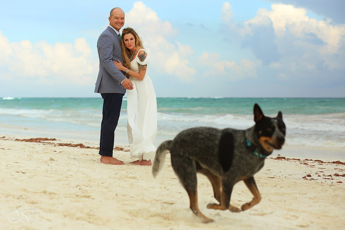 Destination beach wedding bride and groom portrait dog photobomb