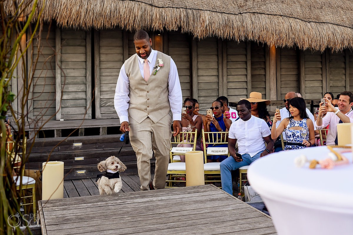 Groom Walking Dog Nizuc Resort Cancun Mexico Destination Wedding