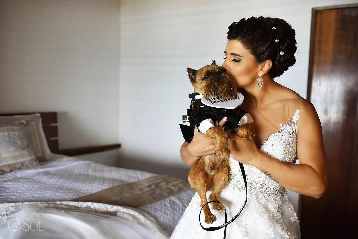 Pets love wedding guest Casa Corazon Playa del Carmen, Mexico.