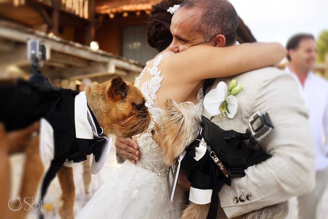 Destination wedding beach dog almost kiss Casa Corazon Playa del Carmen, Mexico.