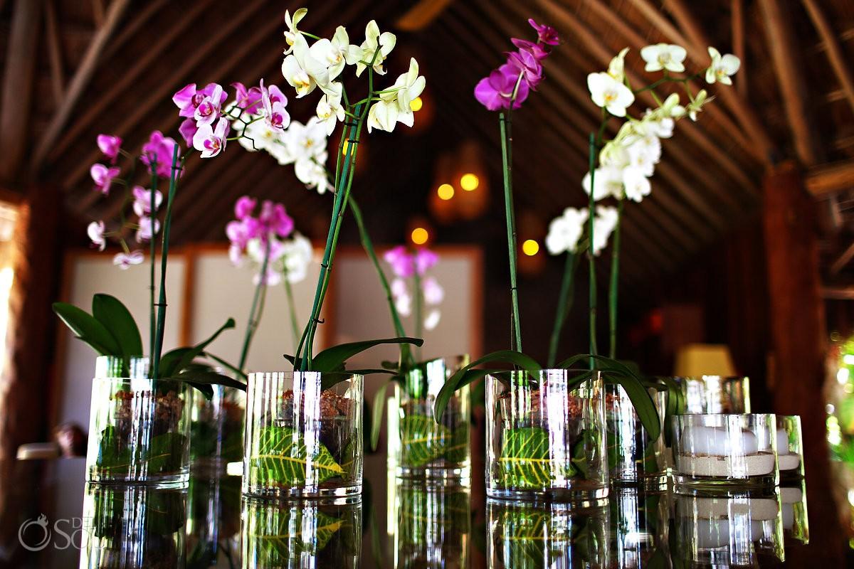 orchids destination wedding venue Mahekal Beach Resort Playa del Carmen Mexico