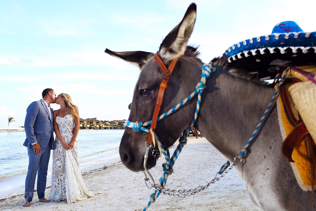 destination wedding bride and groom portrait With sombrero donkey El Dorado Maroma Playa del Carmen Mexico