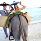 El Dorado Maroma wedding funny wedding photo with donkey and mexican sombreros