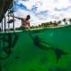 Underwater Mermaid Save the Date - Secrets Aura Cozumel #Aworldofitsown