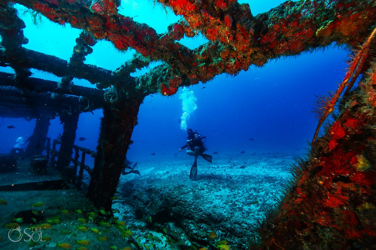 Scuba diver looking at shipwreck in Cancun artificial reef conservation project