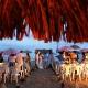 Playa Blanca Panama Wedding Photography