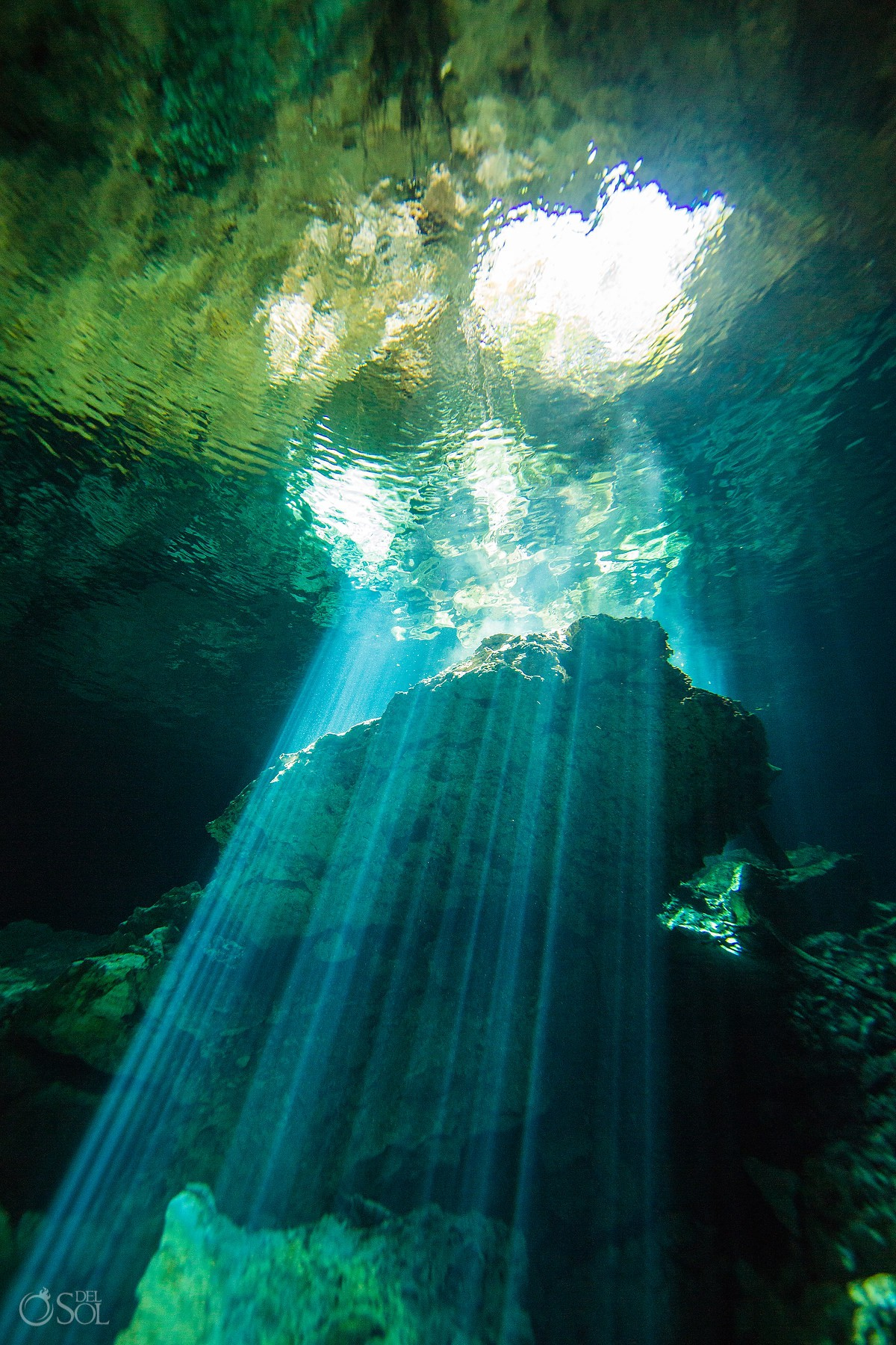 underground Cenote Riviera Maya Mexico underwater RivieraMaya Mexico #Aworldofitsown