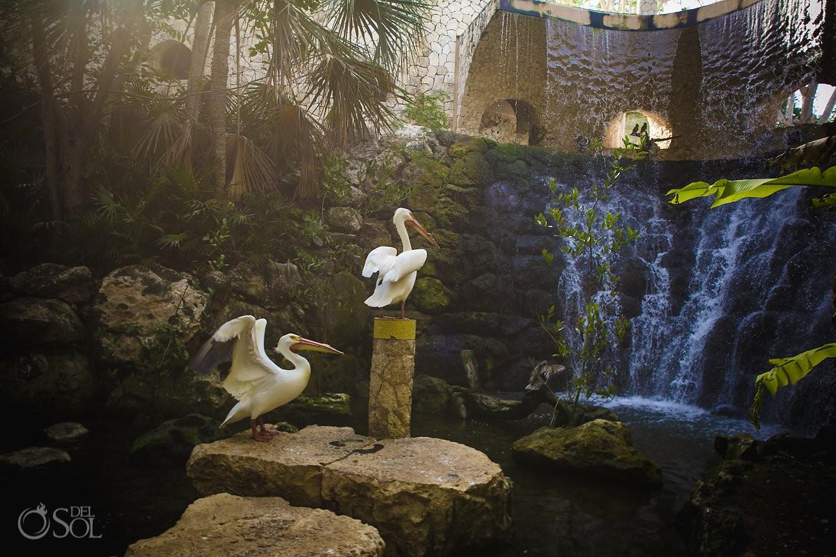 Xcaret Baptism waterfall decoration