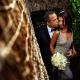 Shiva Tulum weddings Mexico jungle wedding