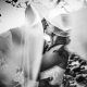 Dreams Las Mareas Wedding Veil first kiss
