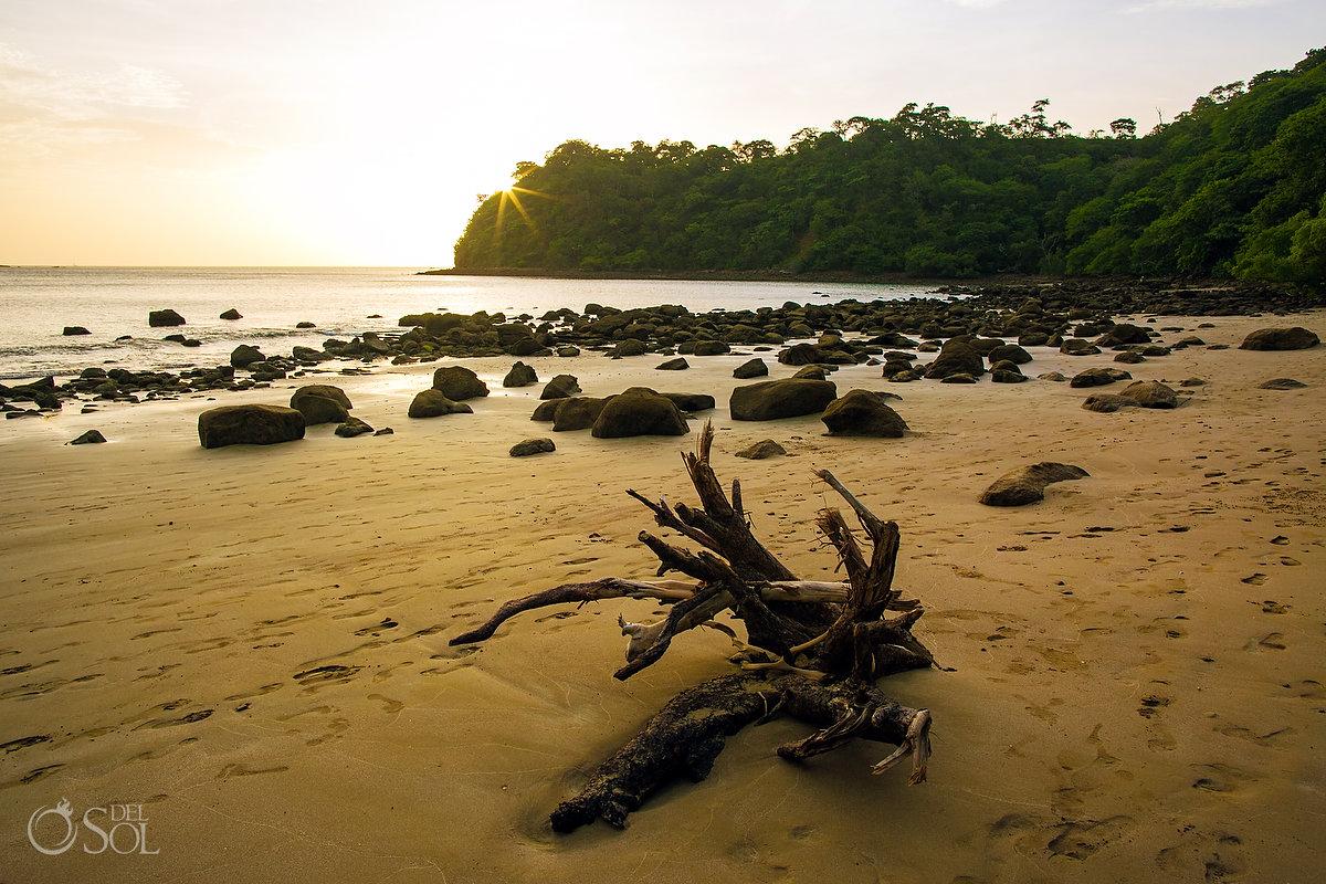 Dreams Las Mareas beach