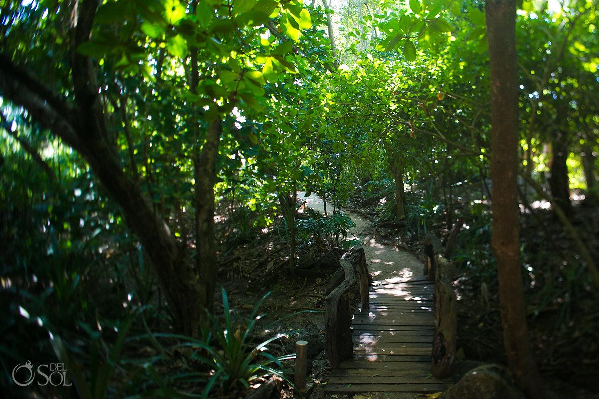 Tamarindo Costa Rica Pura Vida
