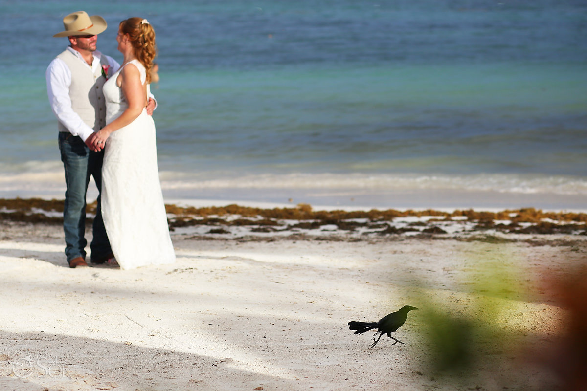 bird walks in front of bride groom Secrets Akumal Elopement Riviera Maya Mexico