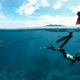 Subaquatic Picture Beloved Freedivers couple with Blacktip Reef Sharks Tahiti Underwater Photography Fine Art