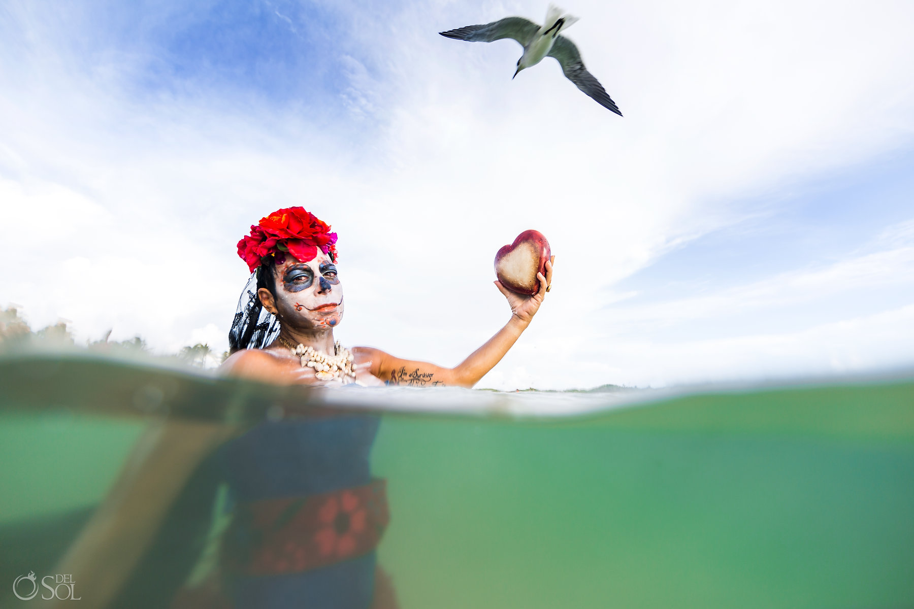 Underwater Photography Subaquatic Photo Catrina Makeup Red Flower Arrangement Seagull flight