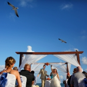 Seagulls flying high in the blue sky over wedding gazebo where bride and groom are celebrating #TravelForLove
