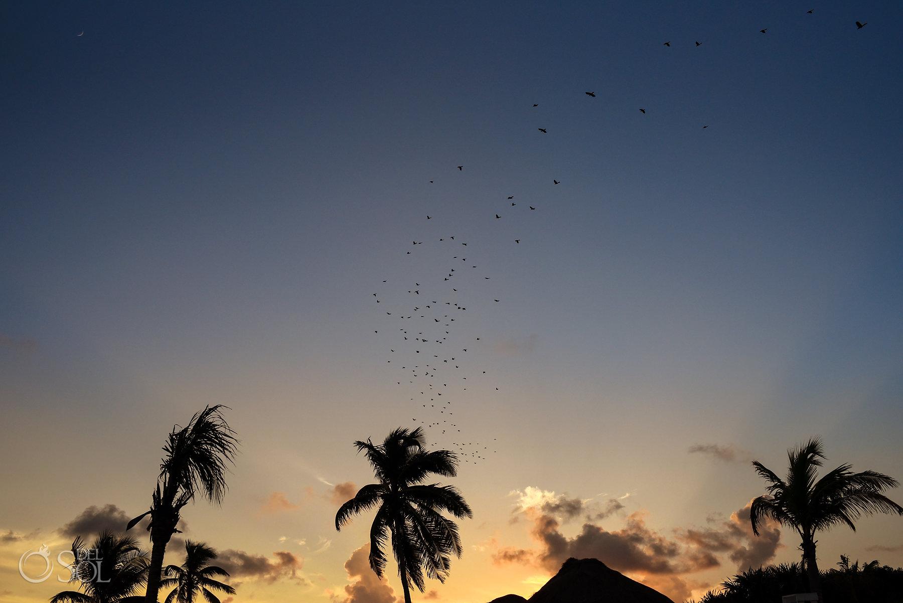 sunset at Dreams Tulum
