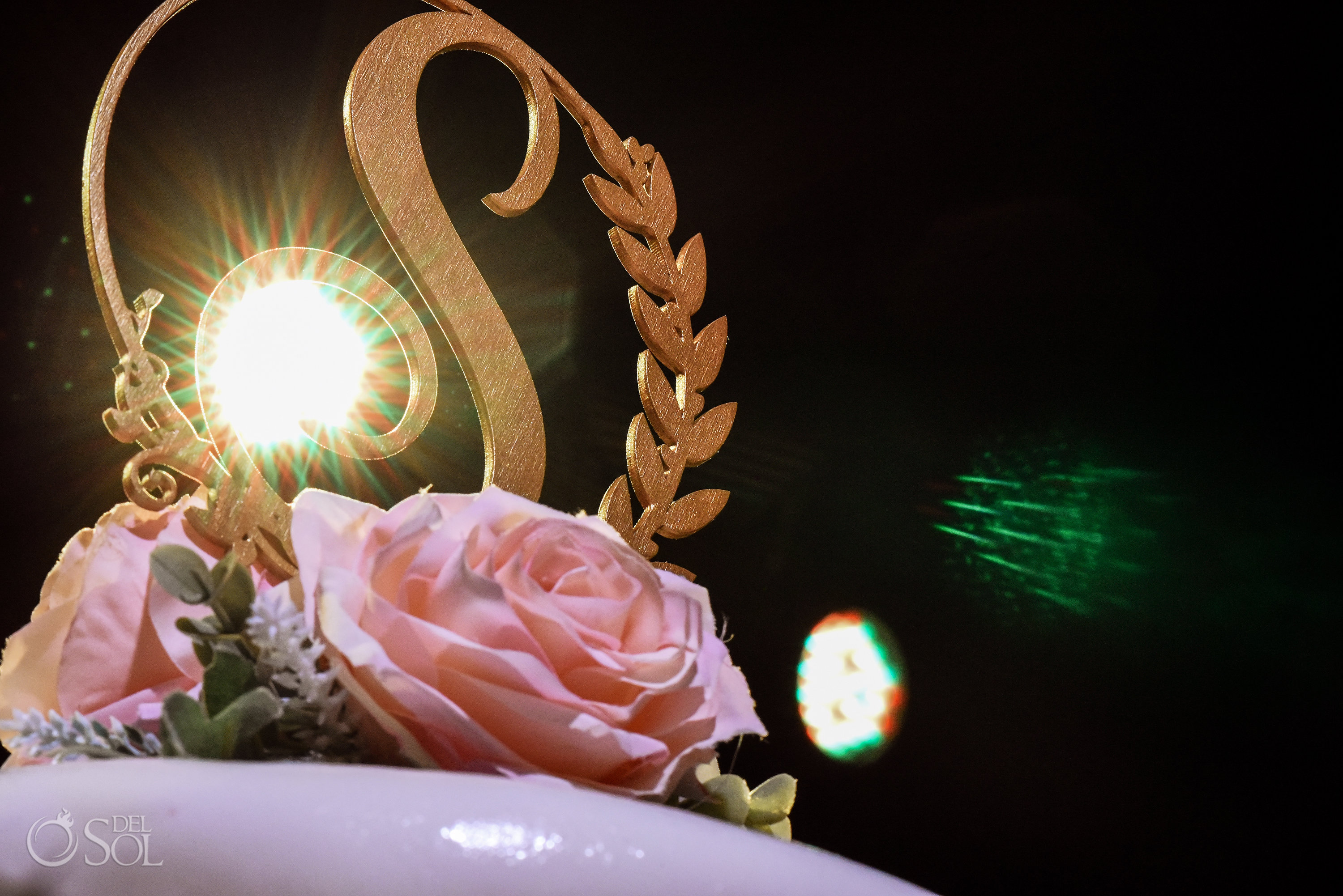 Del Sol Photography Wedding Cake Natural Pink Roses lights effects