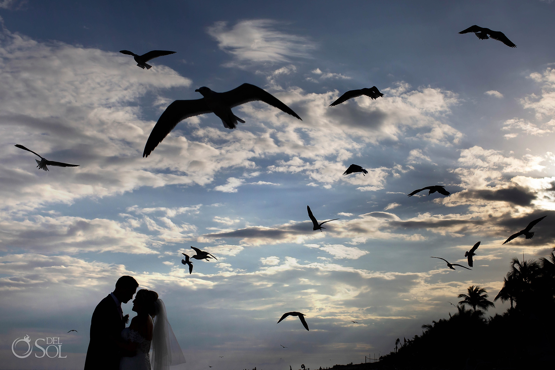 groom and bride silhouette with birds Riviera Maya Photographer