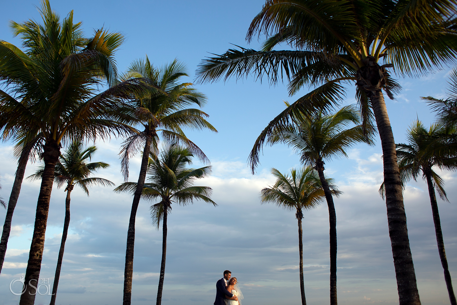 Bride and Gromm Photosession Riu Palace Mexico Palms