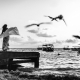 Wellness therapy healing art playa del carmen