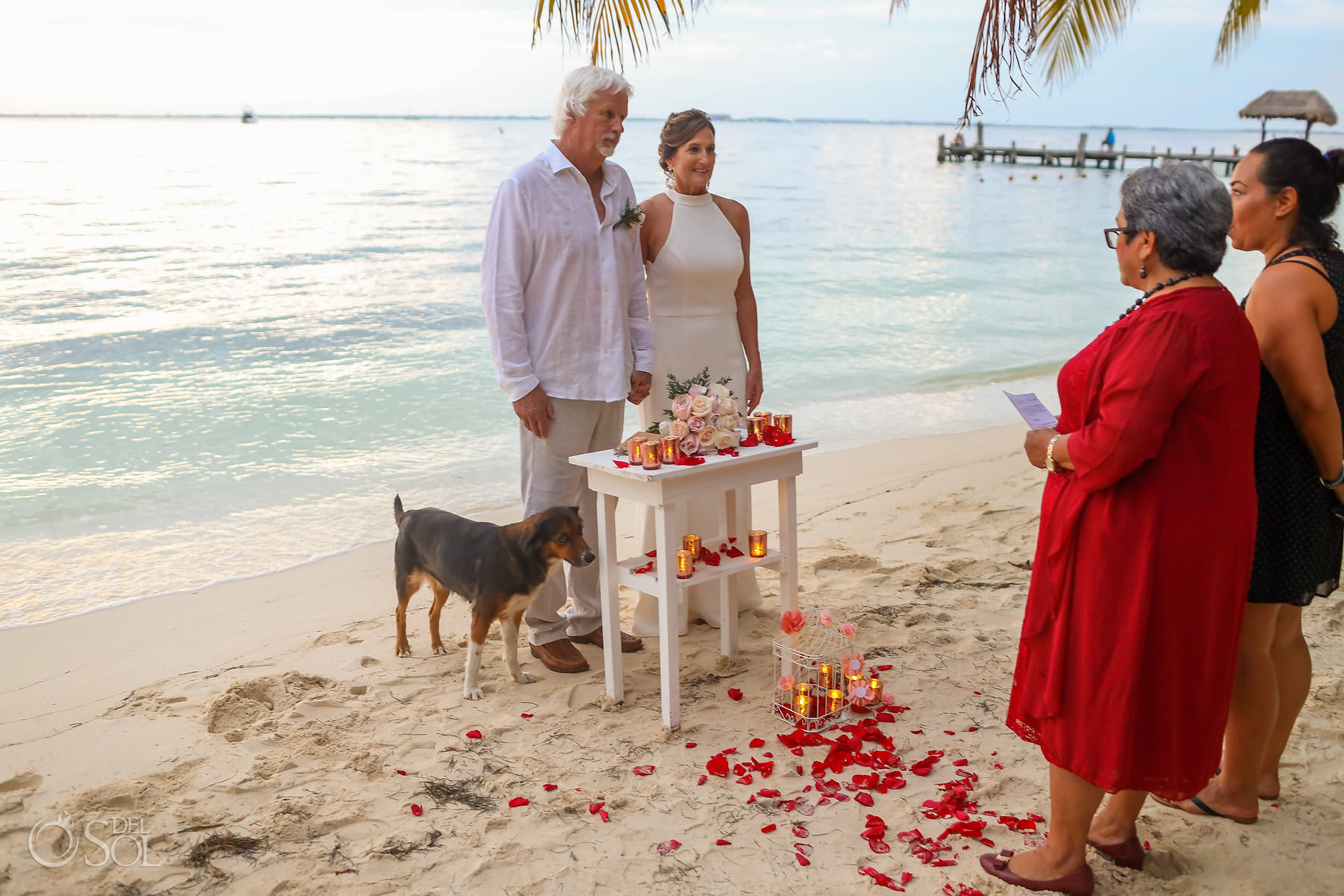 Isla Mujeres Elopement special dog wedding guest