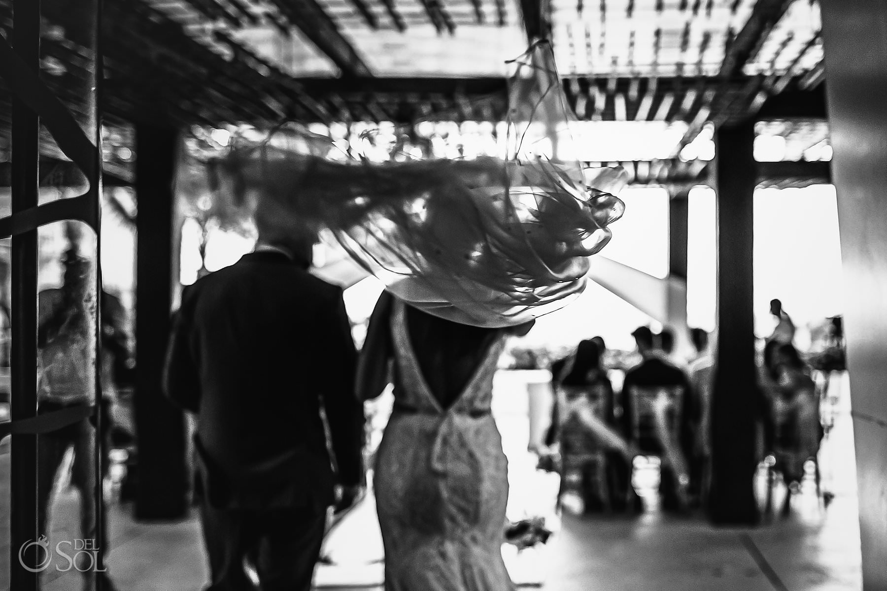 artistic wedding photo bridal veil Secrets the Vine
