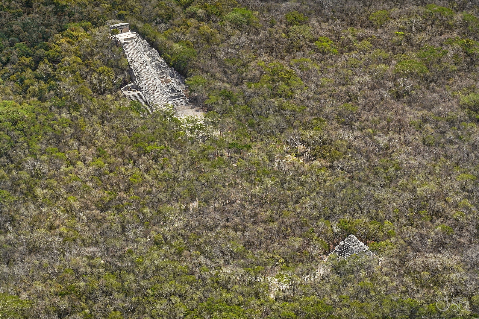 Aerial Photography Nohuch Mul Coba Ruins without tourists